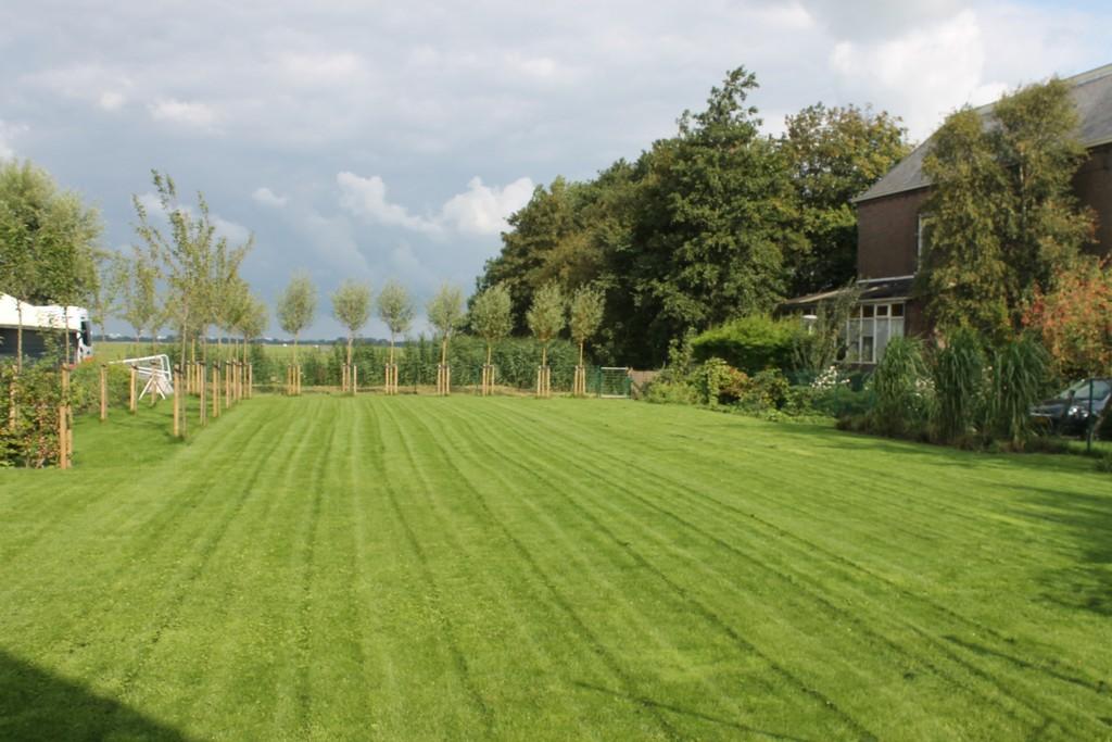 Grote tuin assendelft mdj tuinen for Voorbeeld tuinen kijken